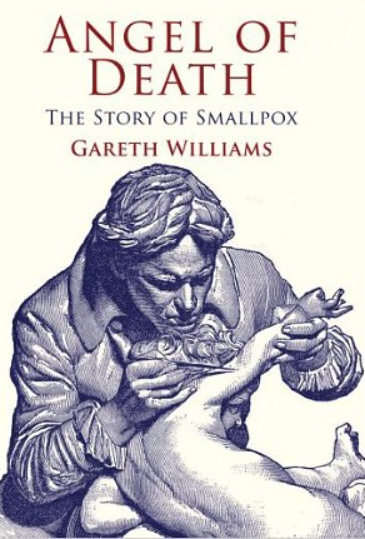 smallpox around the world essay Eradicating small pox around the world name course instructor institution date summary small pox is simply an infectious diseases attributed to certain virus th.